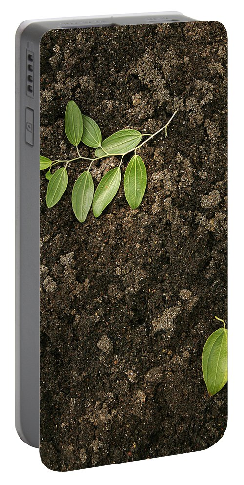 Abstract Portable Battery Charger featuring the photograph Skc 0091 Fallen And Separated by Sunil Kapadia
