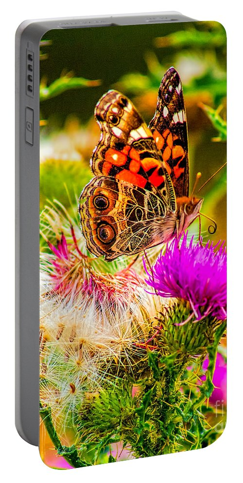 Animal Portable Battery Charger featuring the photograph Skyline Butterfly by Nick Zelinsky