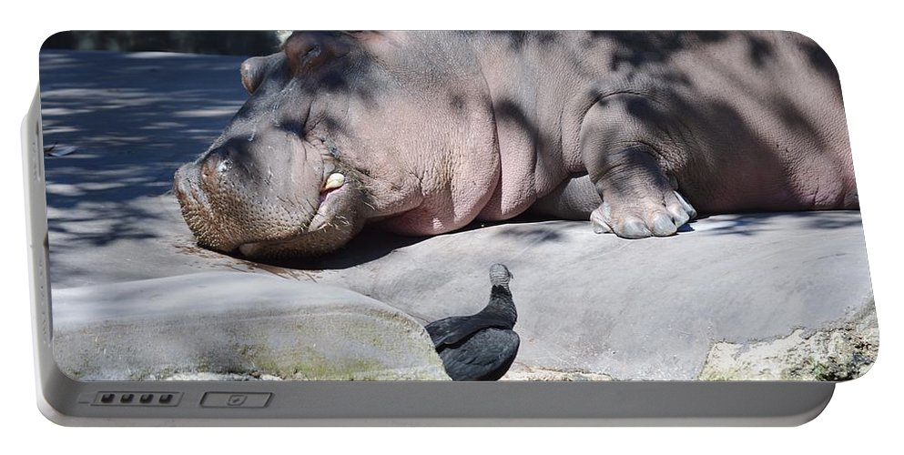 Bird Portable Battery Charger featuring the photograph Sleeping Hippo by Linda Kerkau