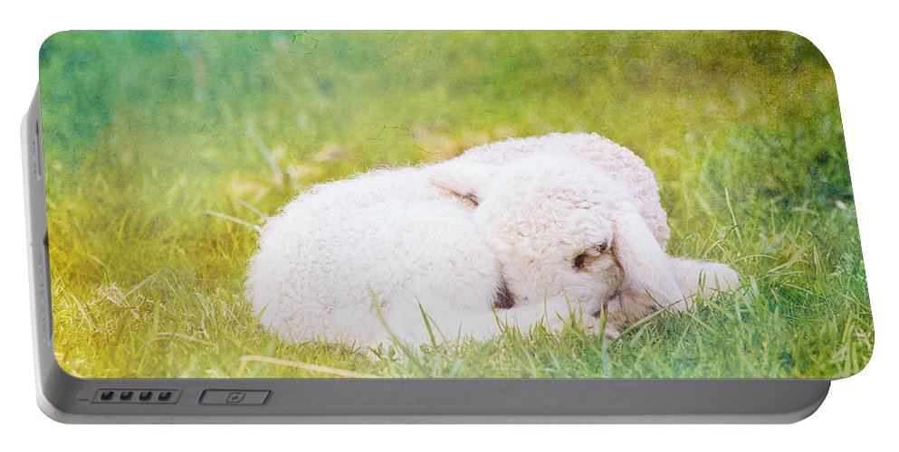 Texture Portable Battery Charger featuring the photograph Sleeping Lamb Green Hue by Pati Photography