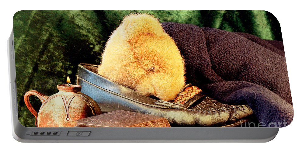 Teddy Portable Battery Charger featuring the photograph Sleeping Teddy by Louise Heusinkveld