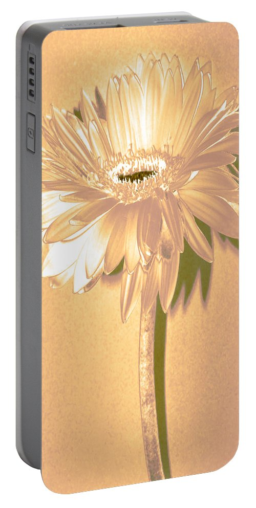 Original Photo Portable Battery Charger featuring the photograph Slice Of Lime by Sherry Allen
