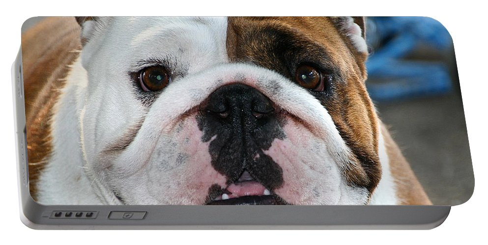 Animal Portable Battery Charger featuring the photograph Smashface by Susan Herber