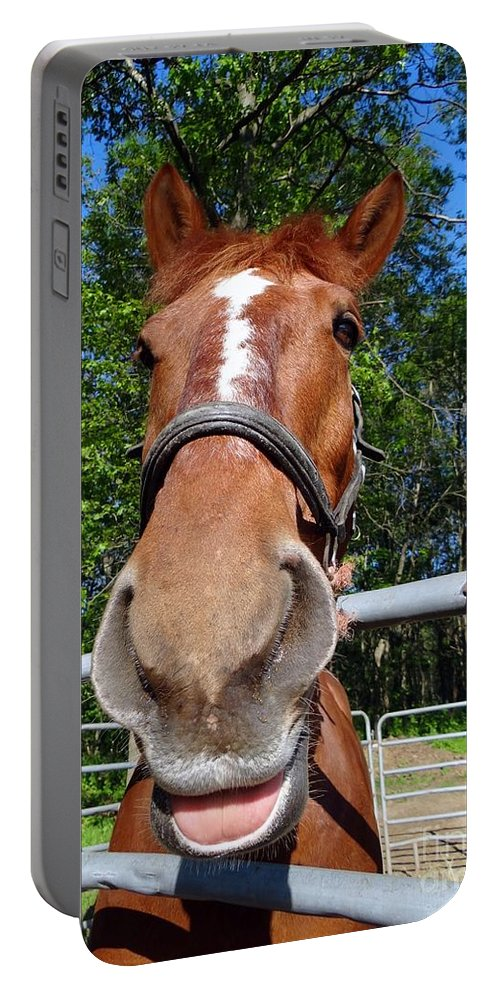 Horses Portable Battery Charger featuring the photograph Smile by Ed Weidman