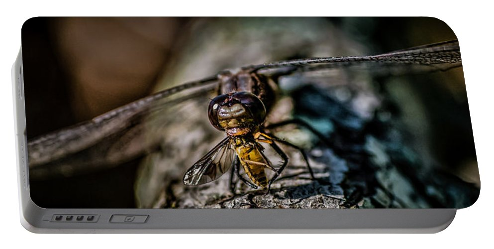 Dragonfly Eating A Deer Fly Portable Battery Charger featuring the photograph Snack Time by Paul Freidlund