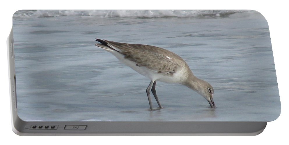Landscape Portable Battery Charger featuring the photograph Snacking Sandpiper by Ellen Meakin