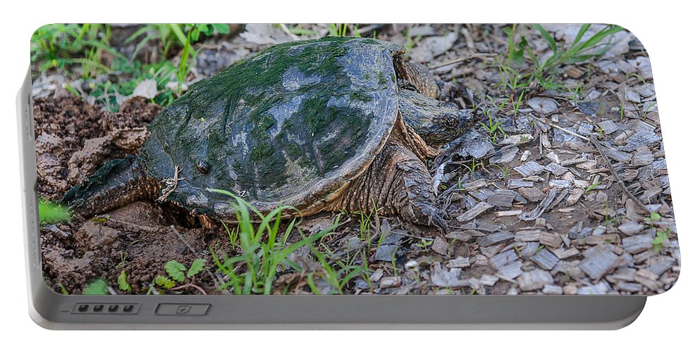 Heron Heaven Portable Battery Charger featuring the photograph Snapper Eggs by Edward Peterson