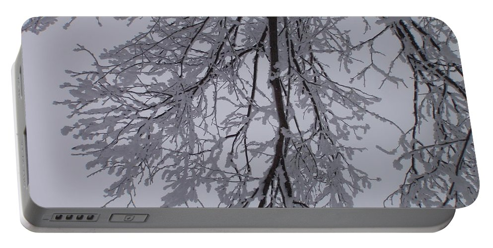Snow Portable Battery Charger featuring the photograph Snow Frosted Branches by Malcolm Snook