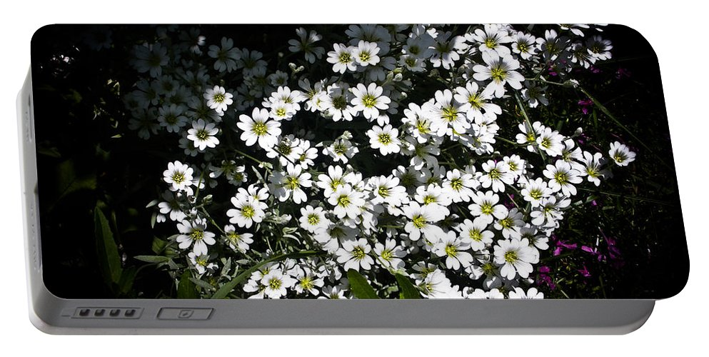 White Flowers Photographs Portable Battery Charger featuring the photograph Snow In Summer by Joann Copeland-Paul