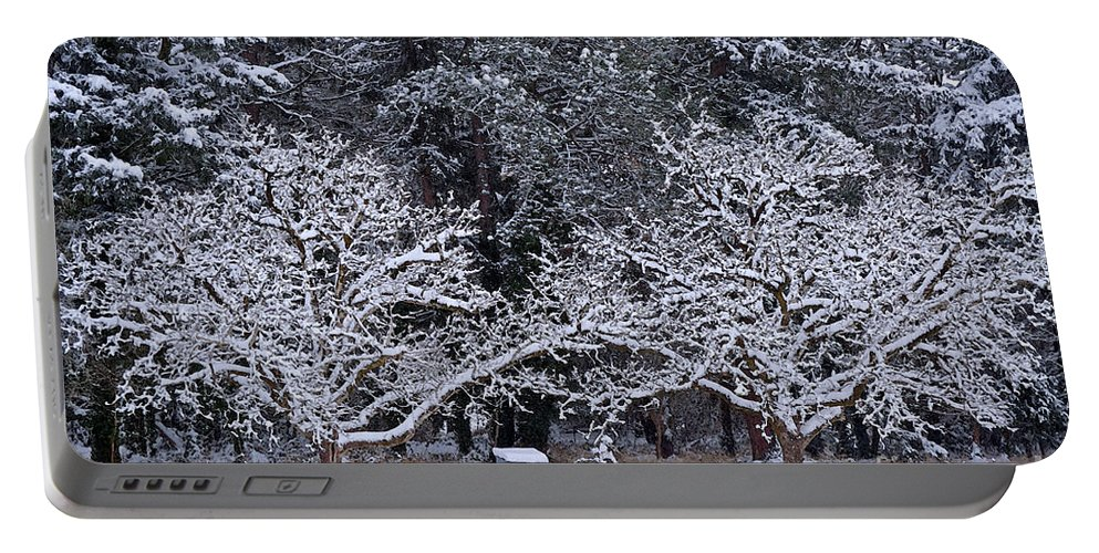 Snow Portable Battery Charger featuring the photograph Snow In The Valley by Gwyn Newcombe