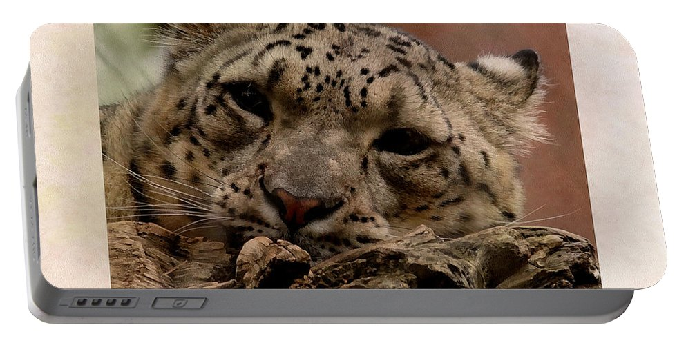 Animals Portable Battery Charger featuring the digital art Snow Leopard 17 by Ernie Echols