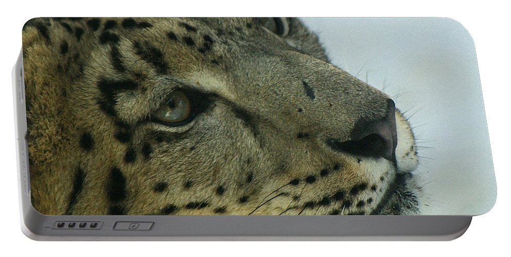 Big Cats Portable Battery Charger featuring the digital art Snow Leopard 2 by Ernie Echols