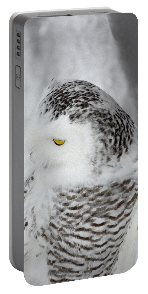 Snowy Owl Portable Battery Charger featuring the photograph Snowy Owl 2 by Tracy Winter