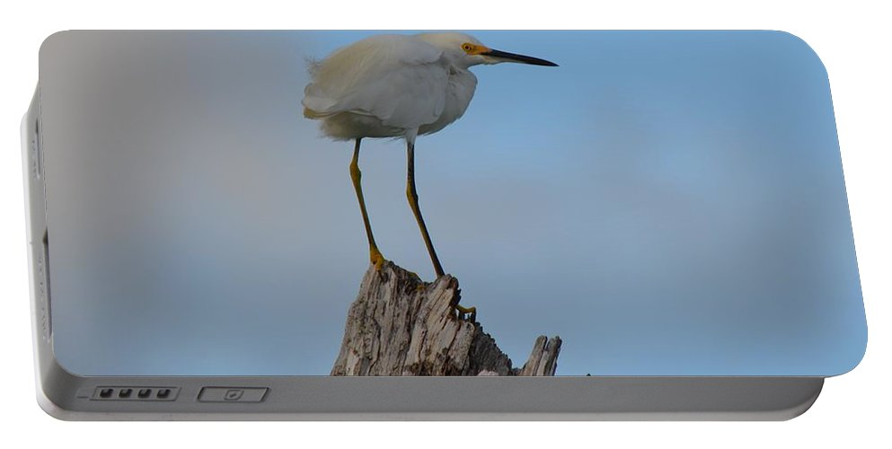 Snowy Portable Battery Charger featuring the photograph Snowy Perched Against A Bright Blue Sky by Patricia Twardzik
