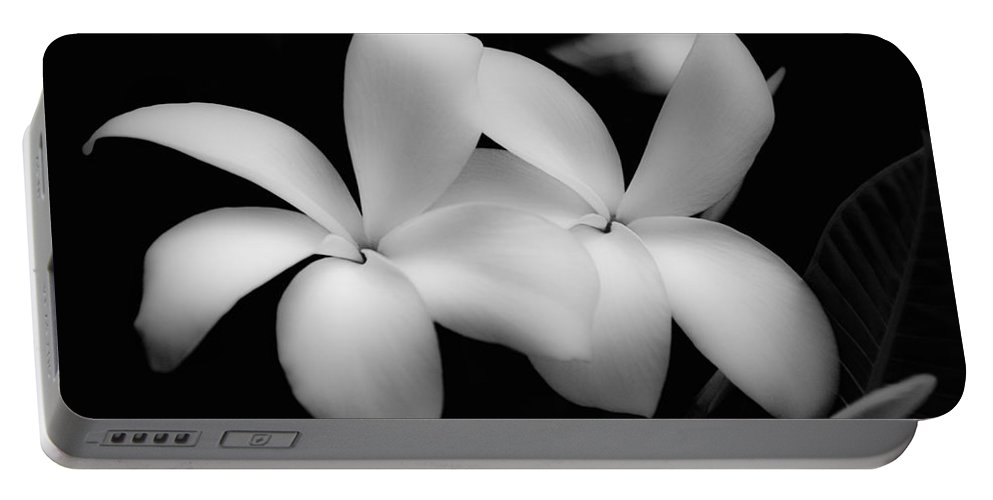 Floral Portable Battery Charger featuring the photograph Soft Floral Beauty by Ron White