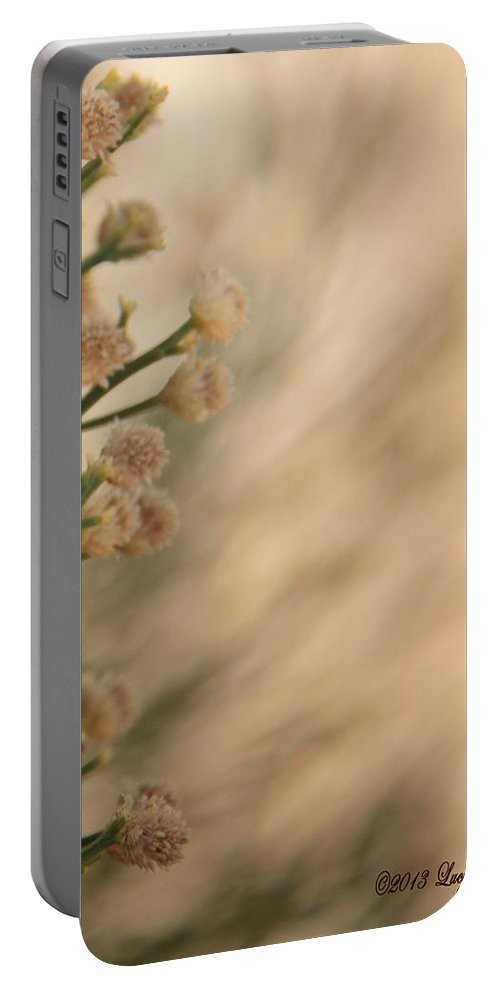 Soft Portable Battery Charger featuring the photograph Softness In The Desert by Lucy VanSwearingen