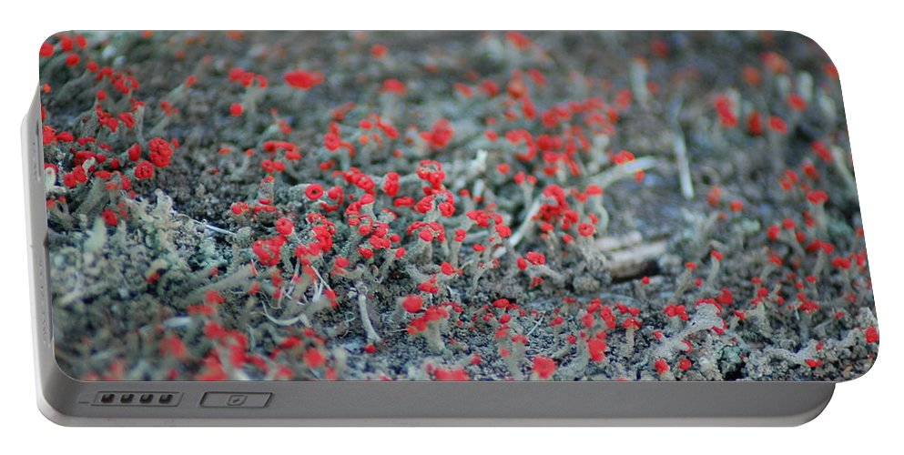 British Soldier Lichen Portable Battery Charger featuring the photograph Soldiers At Attention by Susan Patrie