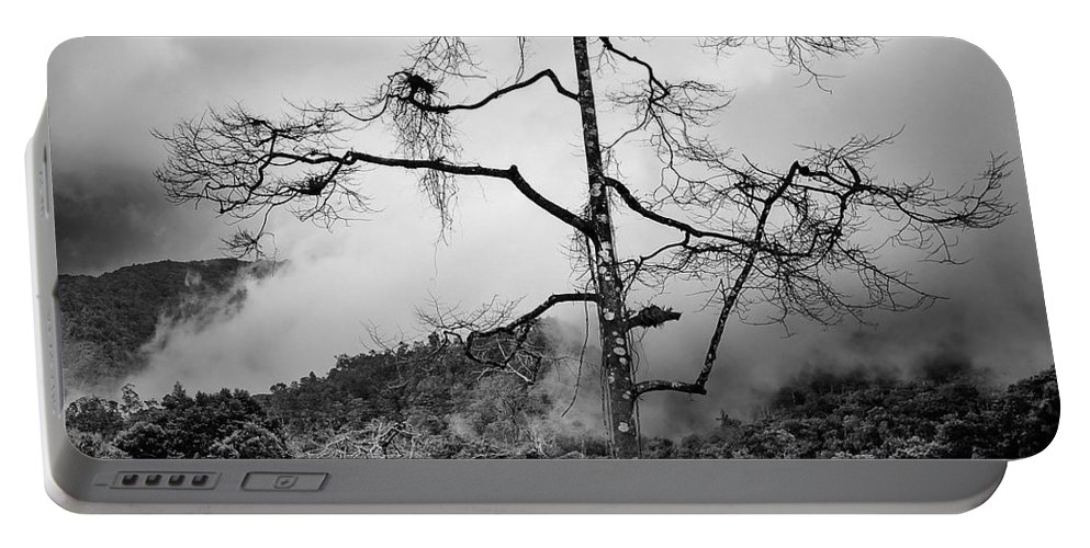 Cameron Highlands Portable Battery Charger featuring the photograph Solitary Tree by Dave Bowman