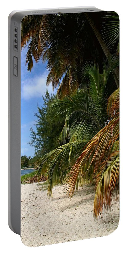 Beach Art Portable Battery Charger featuring the photograph Nude Beach by The Art of Alice Terrill
