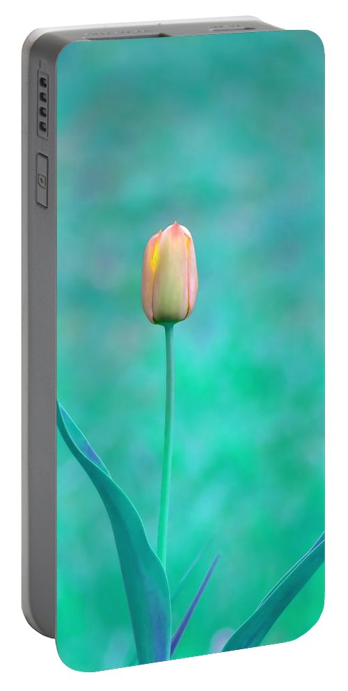 Tulip Portable Battery Charger featuring the photograph Solitude by Deena Stoddard