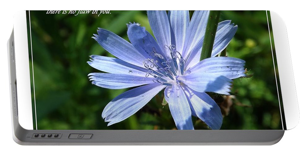 Flower Portable Battery Charger featuring the photograph Song Of Solomon 4 Verse 7 by Sara Raber