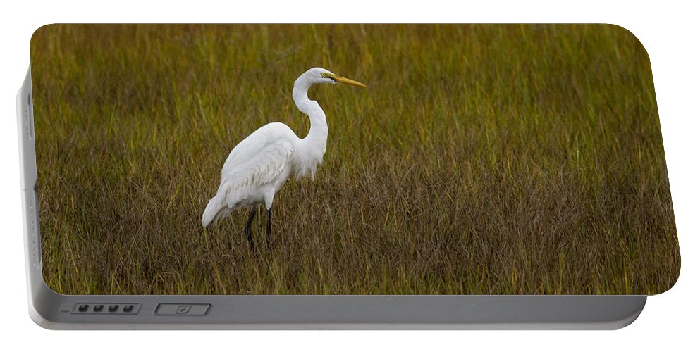 White Portable Battery Charger featuring the photograph Soundside Park Topsail Island Egret by Betsy Knapp