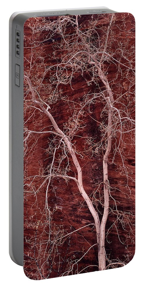 Zion National Park Portable Battery Charger featuring the photograph Southwest Texture by Leland D Howard