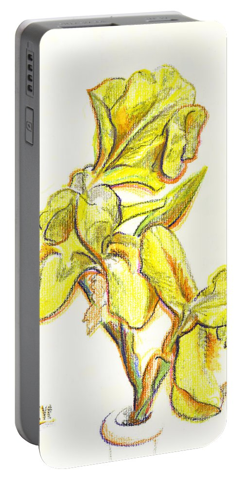 Spanish Irises Portable Battery Charger featuring the painting Spanish Irises by Kip DeVore