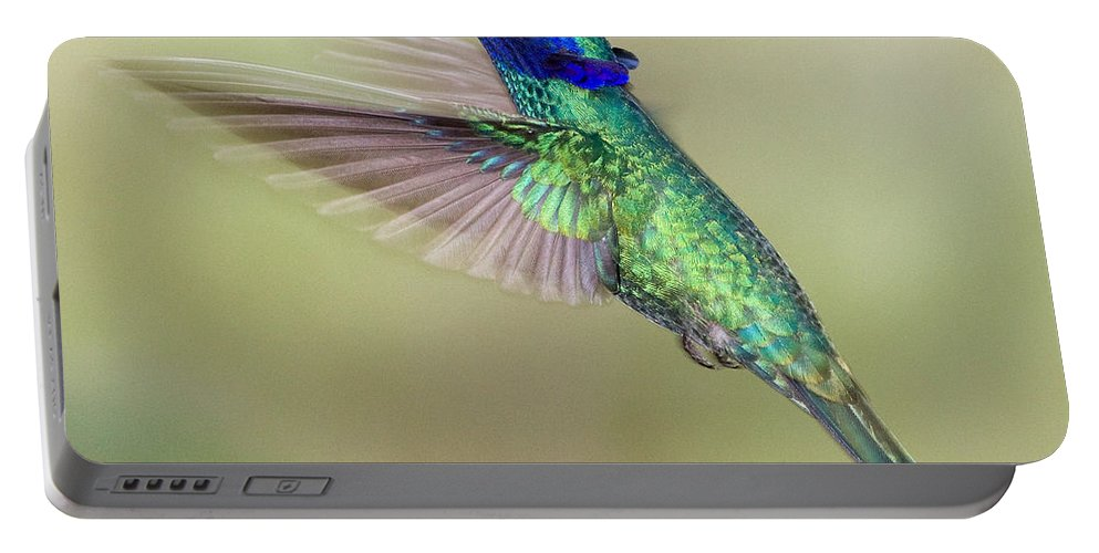 Peru Portable Battery Charger featuring the photograph Sparkling Violetear by Max Waugh
