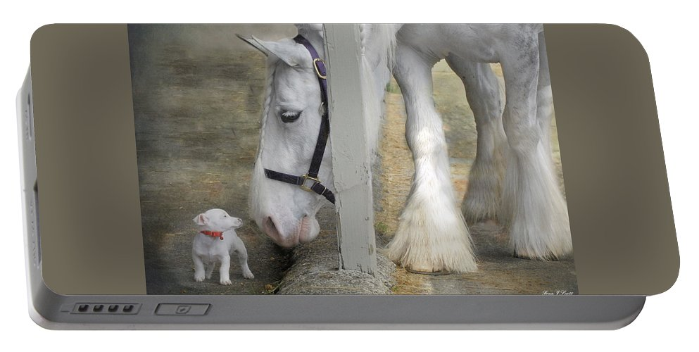 Horses Portable Battery Charger featuring the photograph Sparky And Sterling Silvia by Fran J Scott
