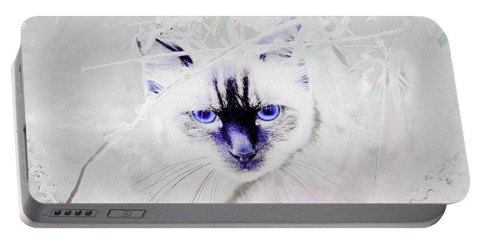 Animals Portable Battery Charger featuring the photograph Spellbound by Holly Kempe