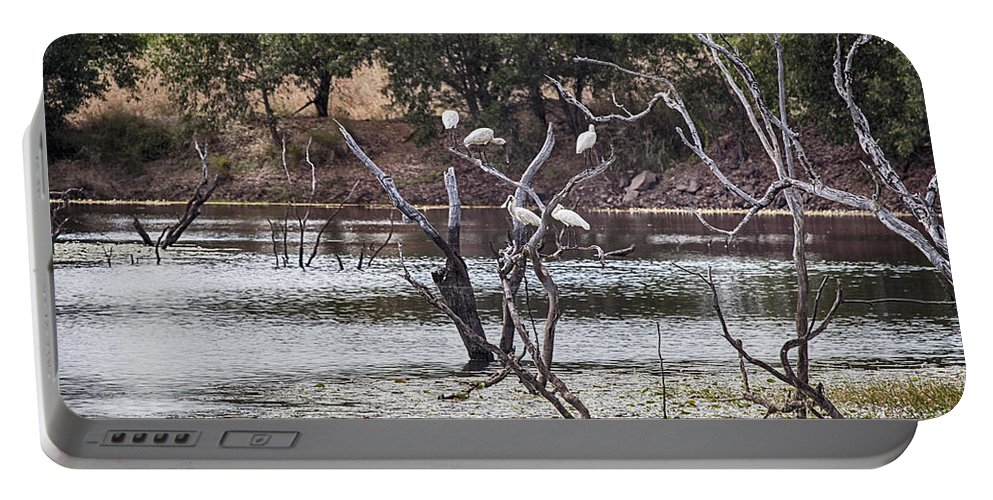 Billabong Portable Battery Charger featuring the photograph Spoonbill Gathering by Douglas Barnard