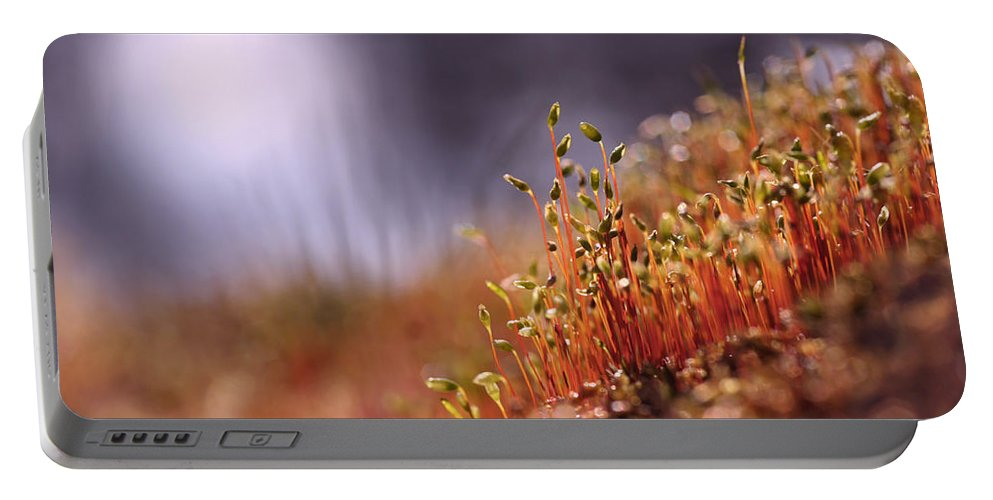 Bright Portable Battery Charger featuring the photograph Sporophyte Colony by Dreamland Media