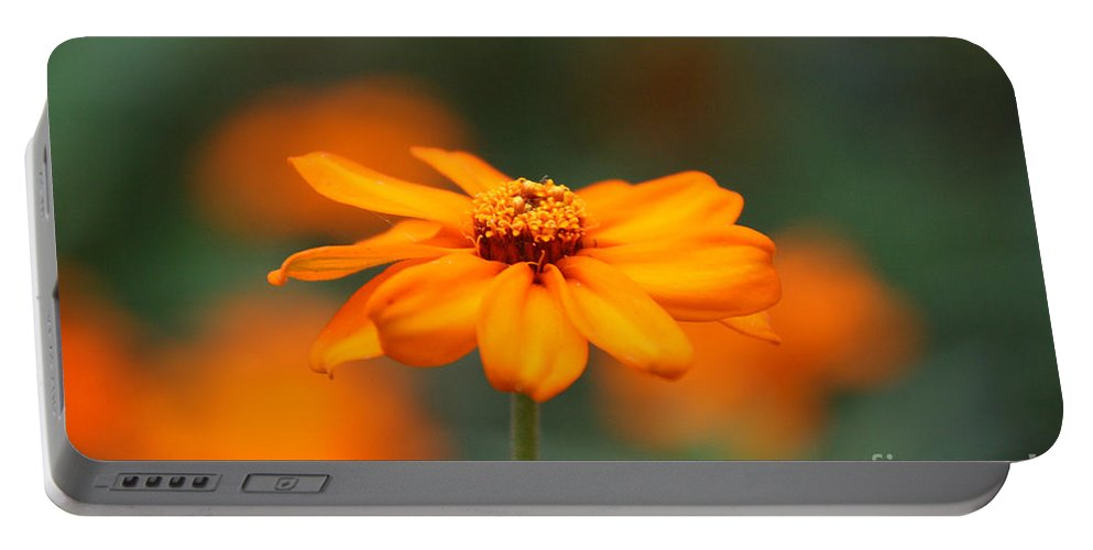 Flower Portable Battery Charger featuring the photograph Spotlight by Susan Herber