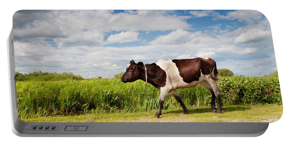 Alive Portable Battery Charger featuring the photograph Calf Walking In Natural Landscape by Arletta Cwalina