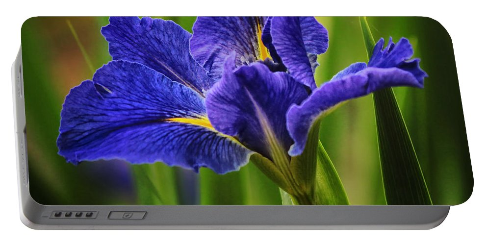 Spring Portable Battery Charger featuring the photograph Spring Blue Iris by Lucy VanSwearingen
