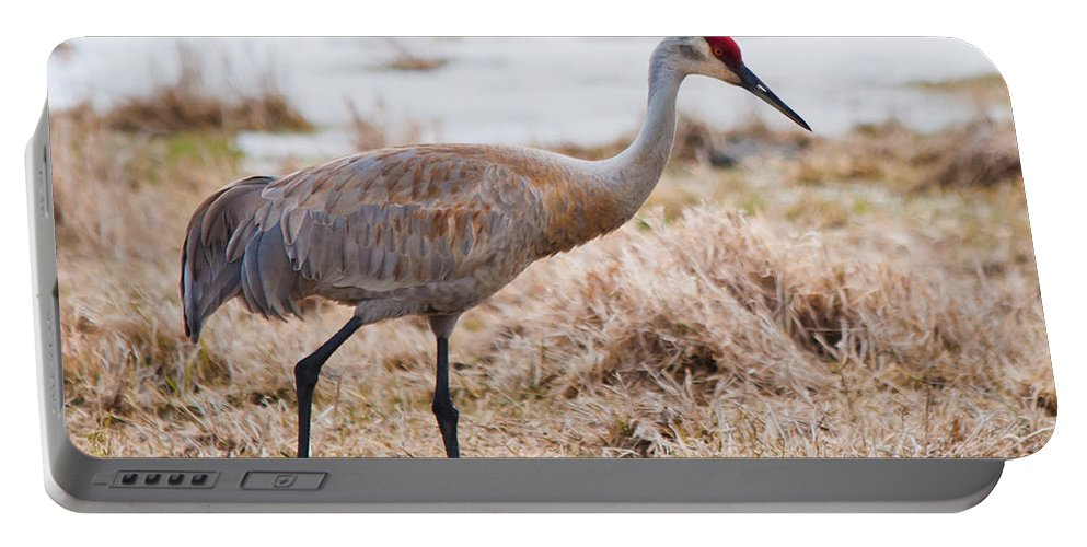 Portable Battery Charger featuring the photograph Spring Crane by Cheryl Baxter