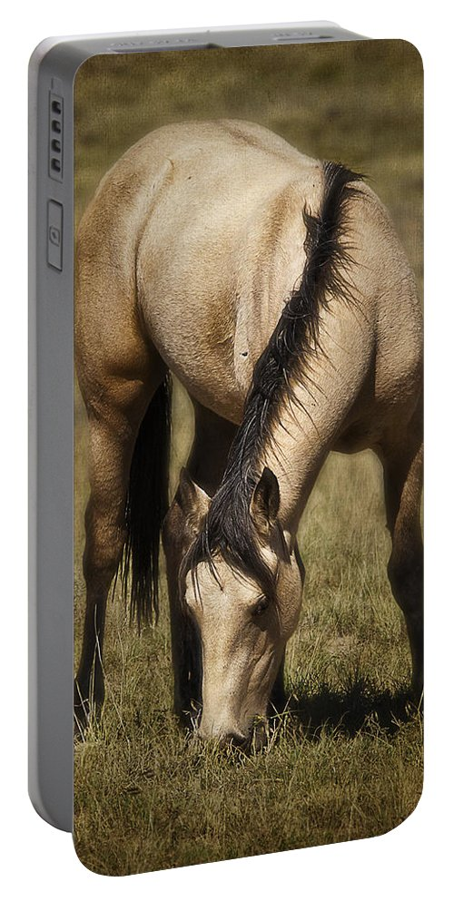 Spring Creek Basin Wild Horses Portable Battery Charger featuring the photograph Spring Creek Basin Wild Horse Grazing by Priscilla Burgers
