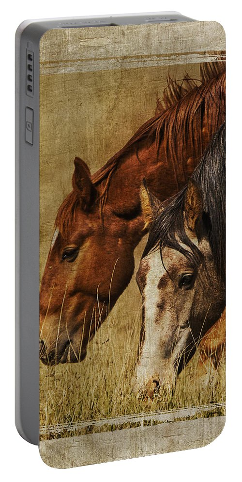Spring Creek Basin Wild Horses Portable Battery Charger featuring the photograph Spring Creek Basin Wild Horses by Priscilla Burgers