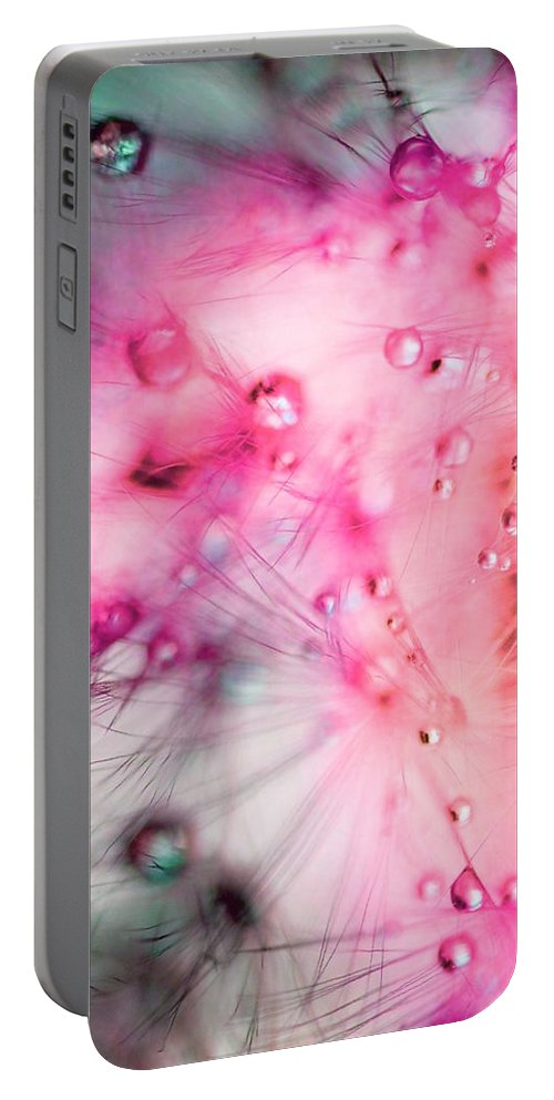 Dandelion Portable Battery Charger featuring the photograph Spring - Dandelion With Water Droplets Abstract by Marianna Mills