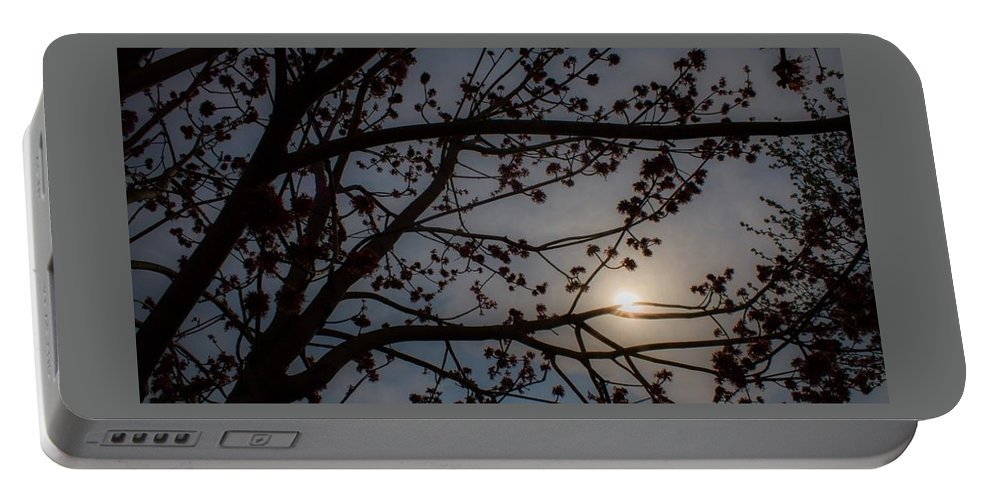 Sun Portable Battery Charger featuring the photograph Spring Day by Kathleen Odenthal