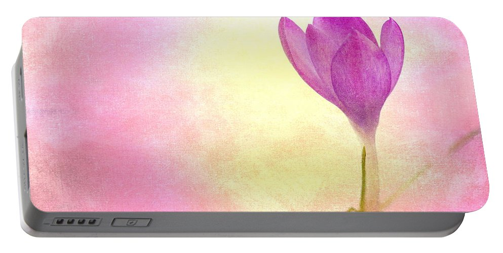 Fragrance Portable Battery Charger featuring the mixed media Spring Flower by Heike Hultsch