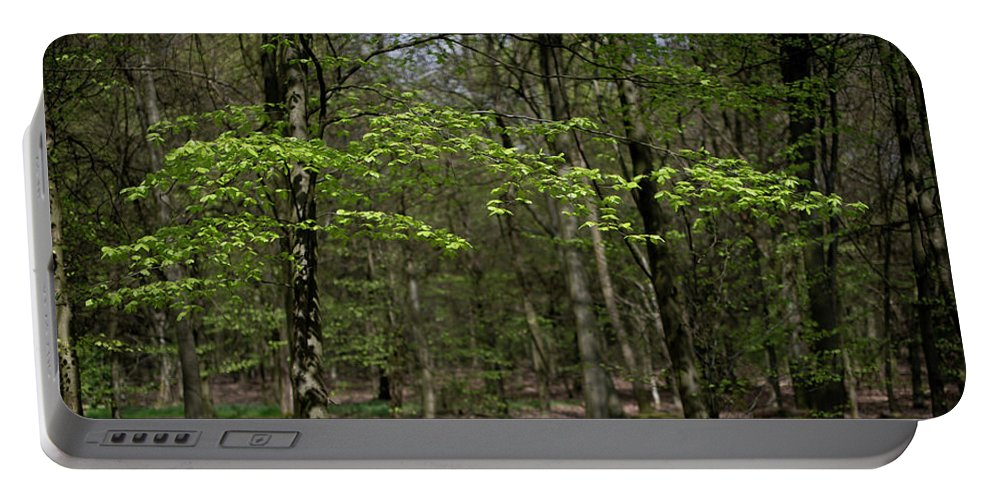 Spring Portable Battery Charger featuring the photograph Spring Greenery by Gary Eason