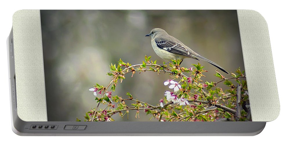 2d Portable Battery Charger featuring the photograph Spring Has Sprung by Brian Wallace