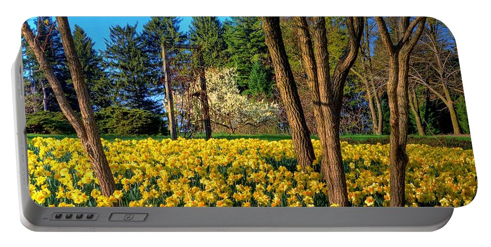 Yellow Portable Battery Charger featuring the photograph Spring Is In The Air by John Absher