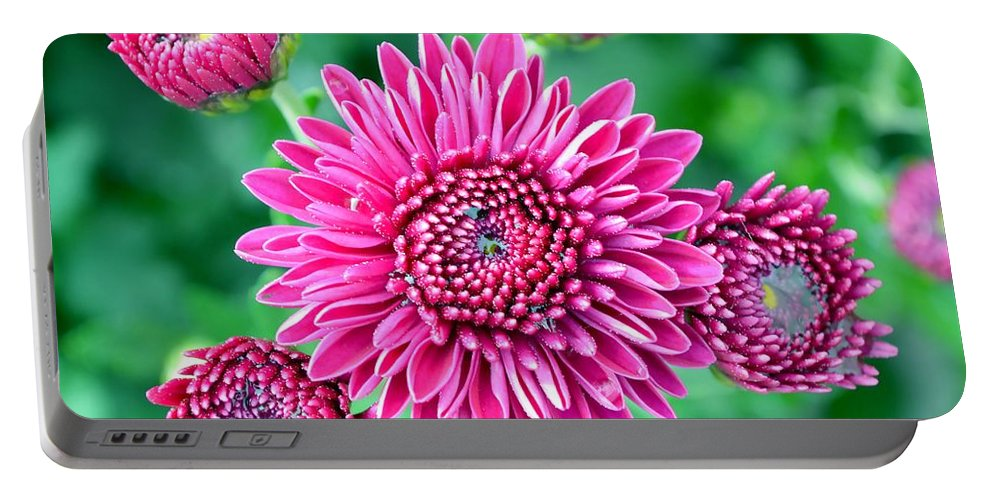 Flower Portable Battery Charger featuring the photograph Spring It On by Deena Stoddard