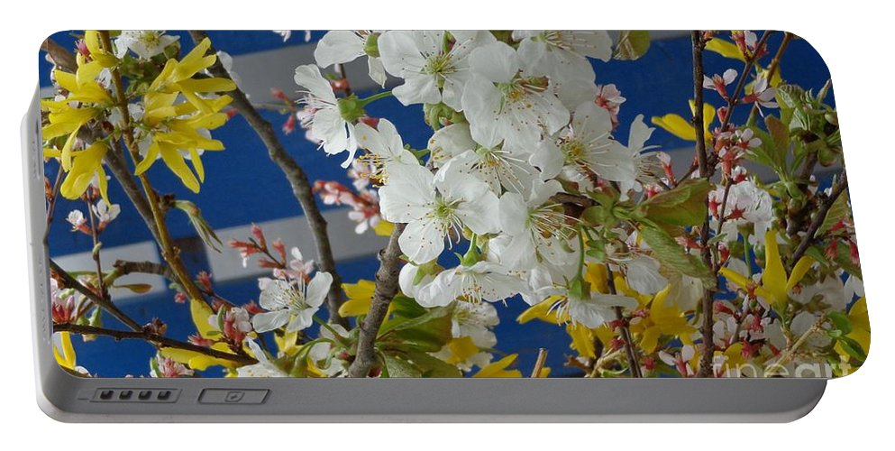 Forsythia Portable Battery Charger featuring the photograph Spring Life In Still-life by Christina Verdgeline