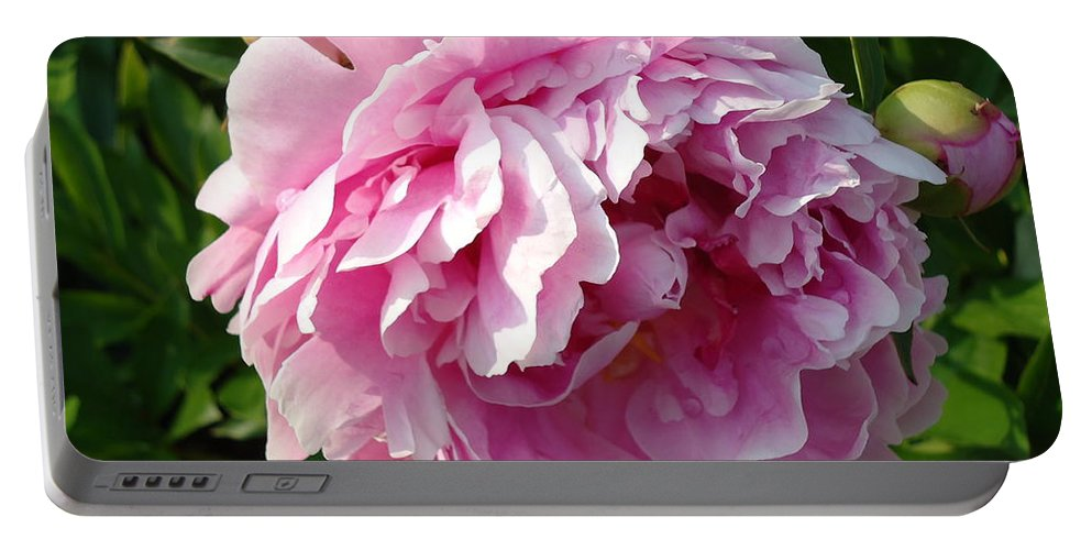 Flower Portable Battery Charger featuring the photograph Spring Peony by H Cooper