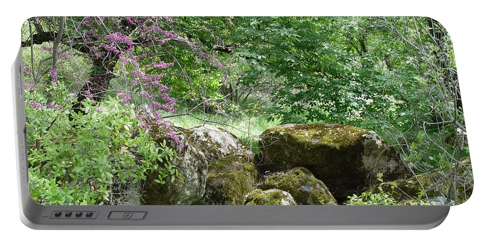 Sequoiah National Park Portable Battery Charger featuring the photograph Spring Sanctuary by Noa Mohlabane