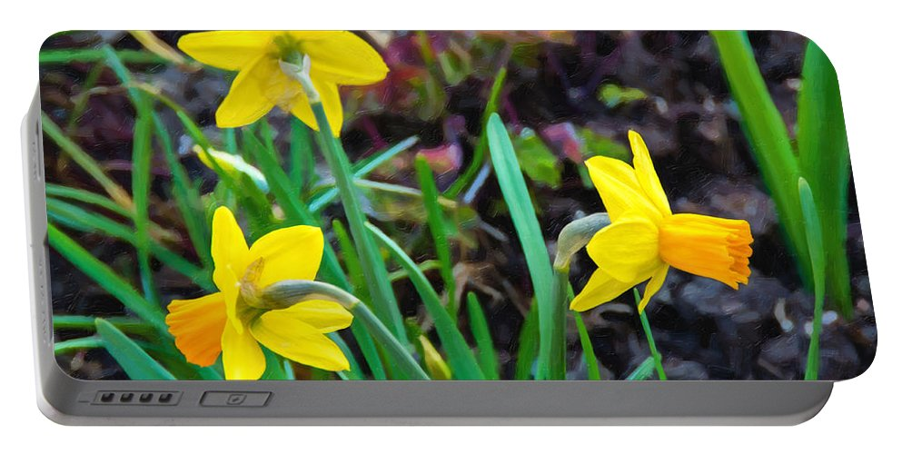 Daffodil Portable Battery Charger featuring the photograph Spring Trinity by Steve Harrington